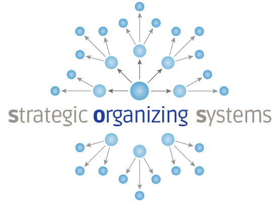 Strategic Organizing Systems